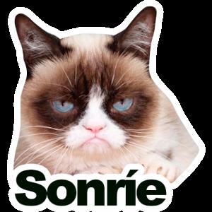 凶八啊欧猫 messages sticker-2