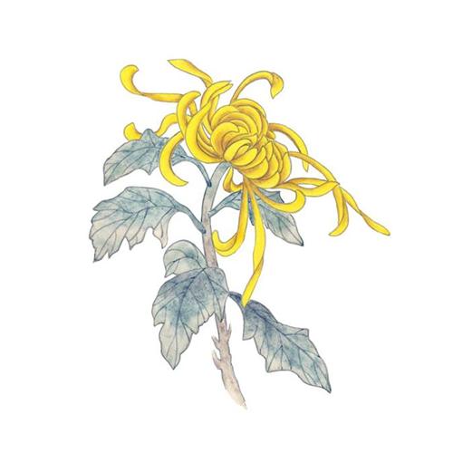 酷爱水墨花-Ink Flowers messages sticker-7