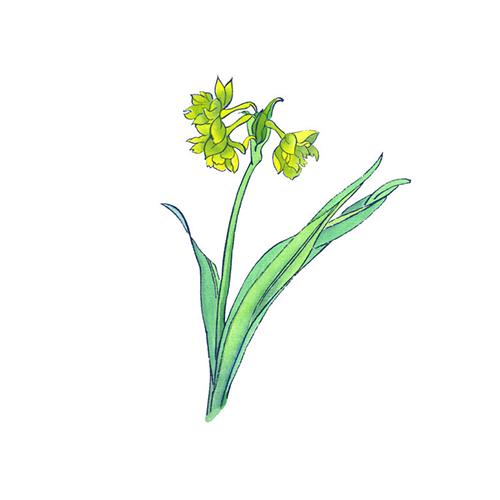 酷爱水墨花-Ink Flowers messages sticker-3