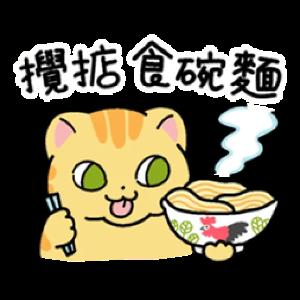 皇金钞级喵 messages sticker-10