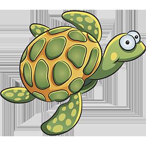 turtle sticker messages sticker-1