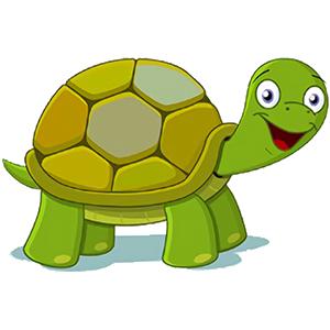 turtle sticker messages sticker-6