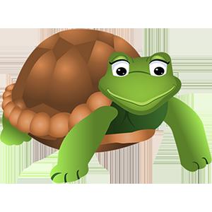 turtle sticker messages sticker-8