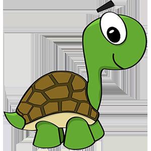 turtle sticker messages sticker-2
