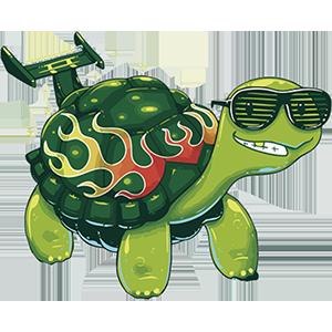 turtle sticker messages sticker-9