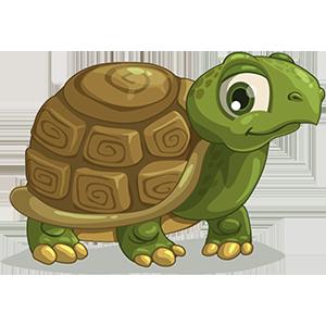 turtle sticker messages sticker-4