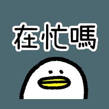 唠叨的小鸟 messages sticker-3