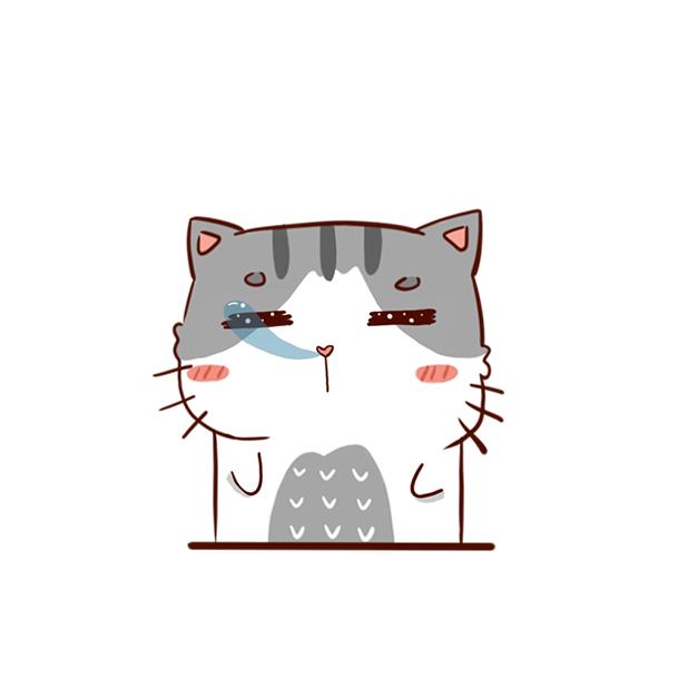 Hui Hui Cat messages sticker-5