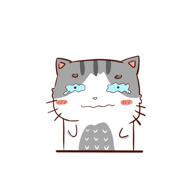 Hui Hui Cat messages sticker-4