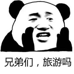 小旅之行STICKER messages sticker-6