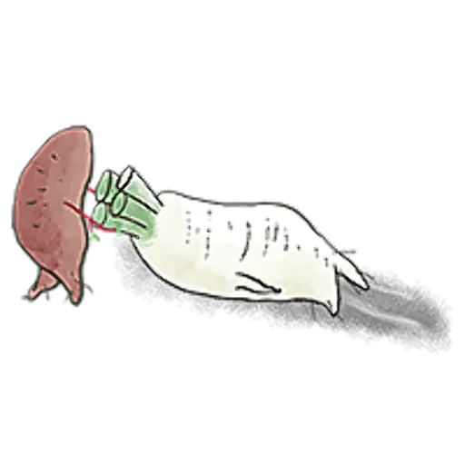 A Radish With Ideals messages sticker-8