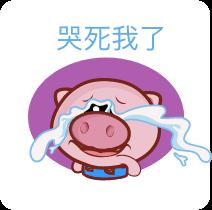 懊稞手机客户端-小猪贴纸 messages sticker-6
