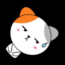 歪头猫贴图 messages sticker-2