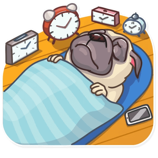 Funny Pug Stickers Pack messages sticker-9