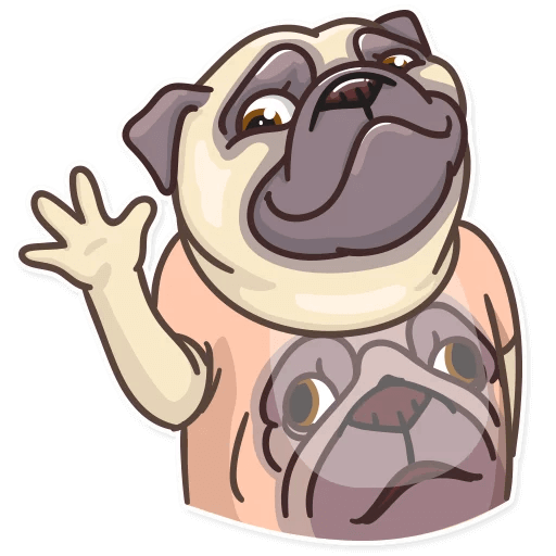 Funny Pug Stickers Pack messages sticker-3