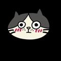 Gray Kitties messages sticker-8