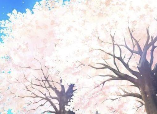 樱花动漫-Sakura Sticker messages sticker-5