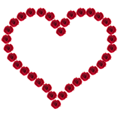 Lovely Roses Sticker messages sticker-0