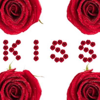 Lovely Roses Sticker messages sticker-5