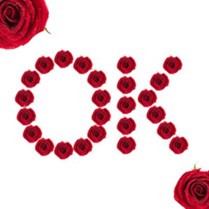 Lovely Roses Sticker messages sticker-2