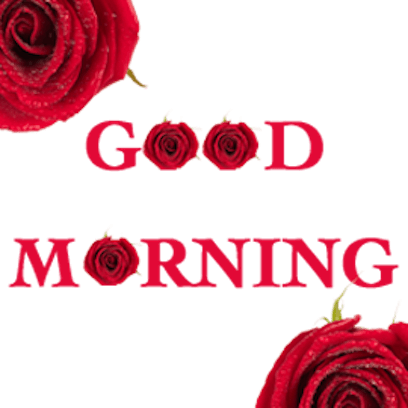 Lovely Roses Sticker messages sticker-7