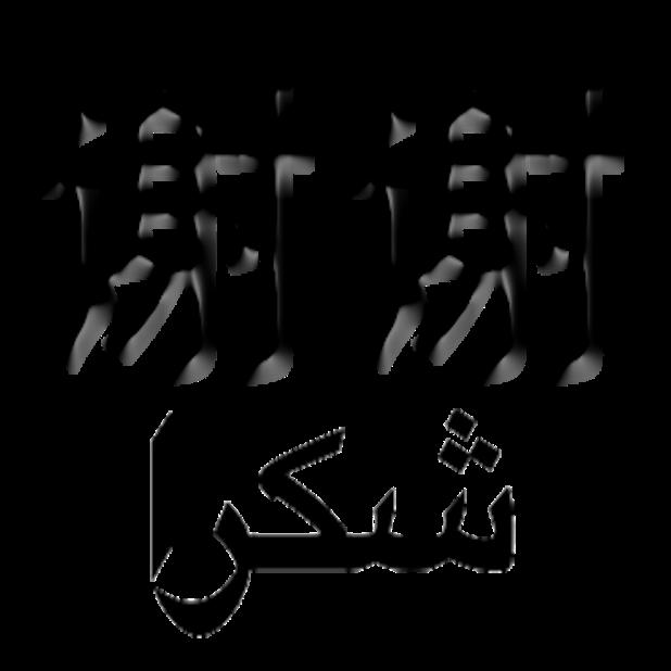 Arabic Chinese Sticker messages sticker-4