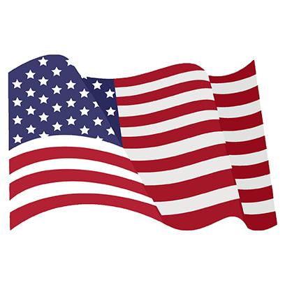 American Patriots Stickers messages sticker-11
