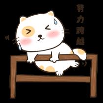 喵喵小猫——短信聊天表情包 messages sticker-3