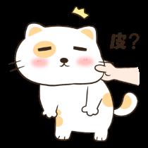 喵喵小猫——短信聊天表情包 messages sticker-9