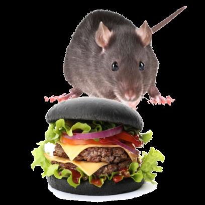 Burger Rats messages sticker-1