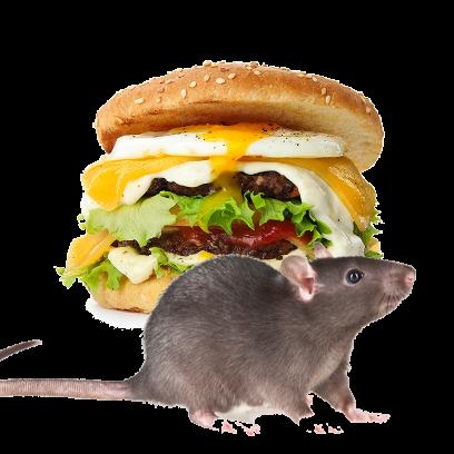 Burger Rats messages sticker-3
