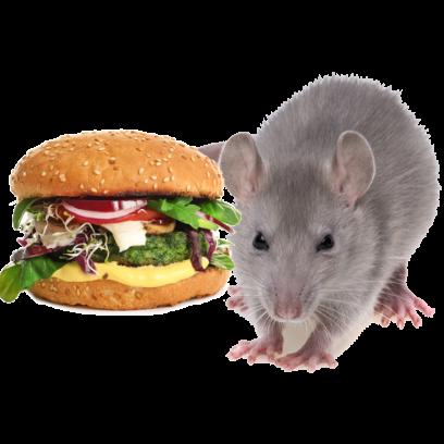 Burger Rats messages sticker-4