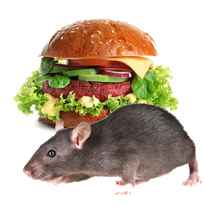 Burger Rats messages sticker-5