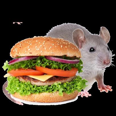 Burger Rats messages sticker-0