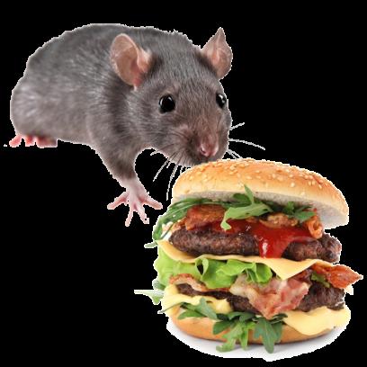 Burger Rats messages sticker-7