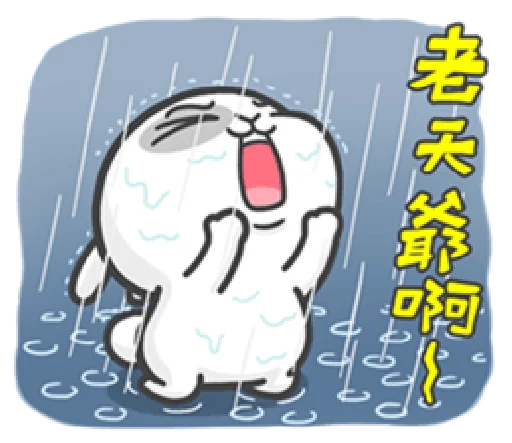 爱顽兔 messages sticker-6
