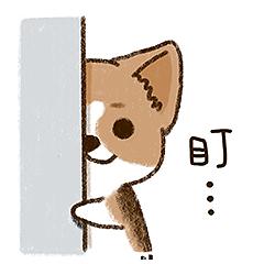 Featured Wallpaper messages sticker-0