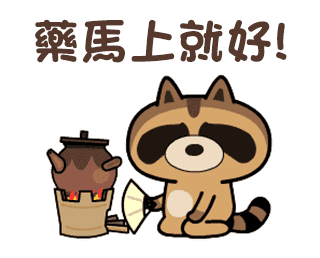 daily life of cute raccoons messages sticker-9