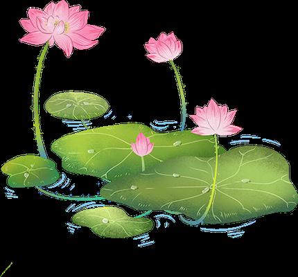Lotus sticker messages sticker-10