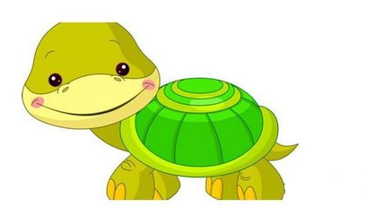 Little Turtle Life messages sticker-8