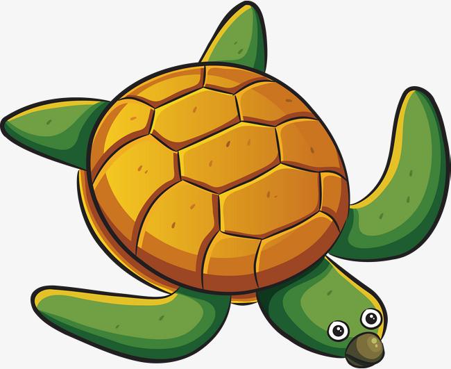 Little Turtle Life messages sticker-11