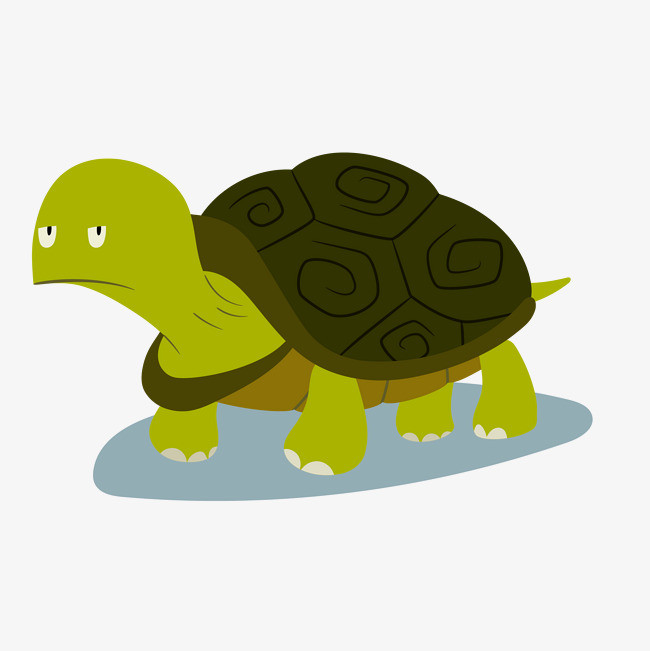 Little Turtle Life messages sticker-9