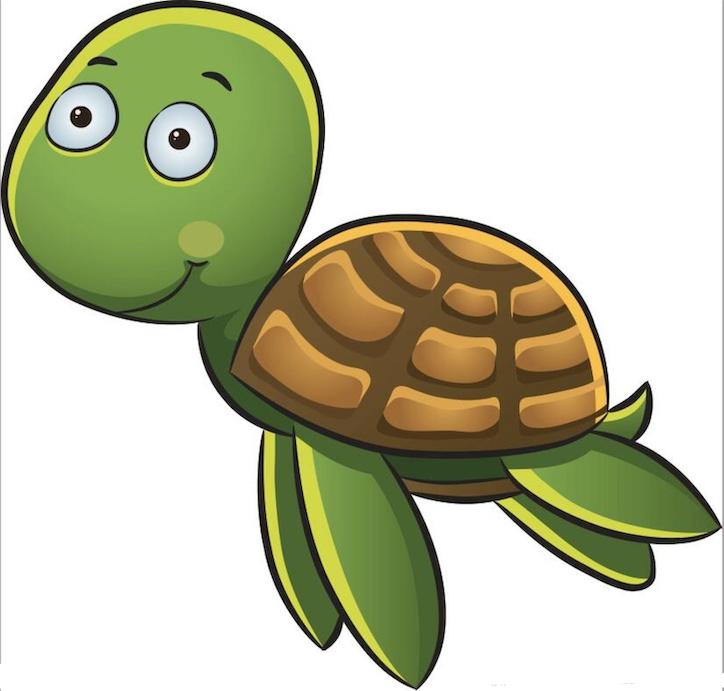 Little Turtle Life messages sticker-5