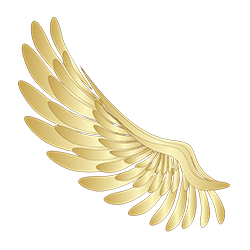 Wings-stickers messages sticker-0