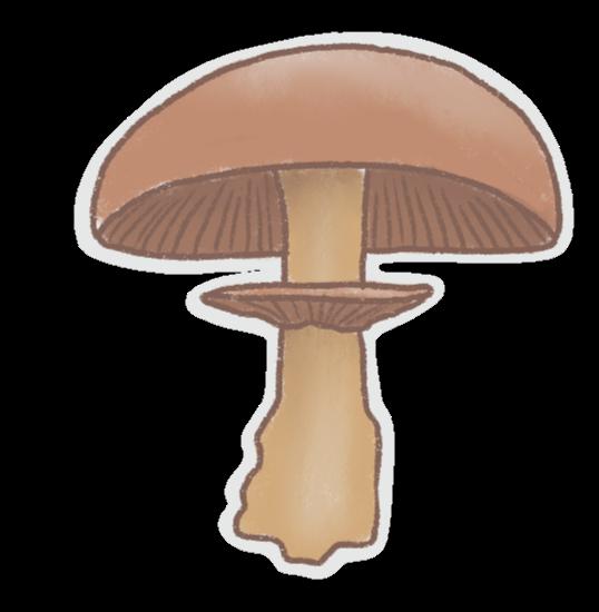 Mushrooms Stickers messages sticker-2
