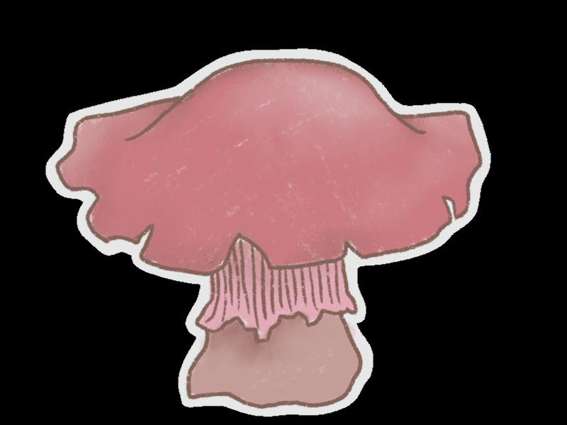 Mushrooms Stickers messages sticker-8
