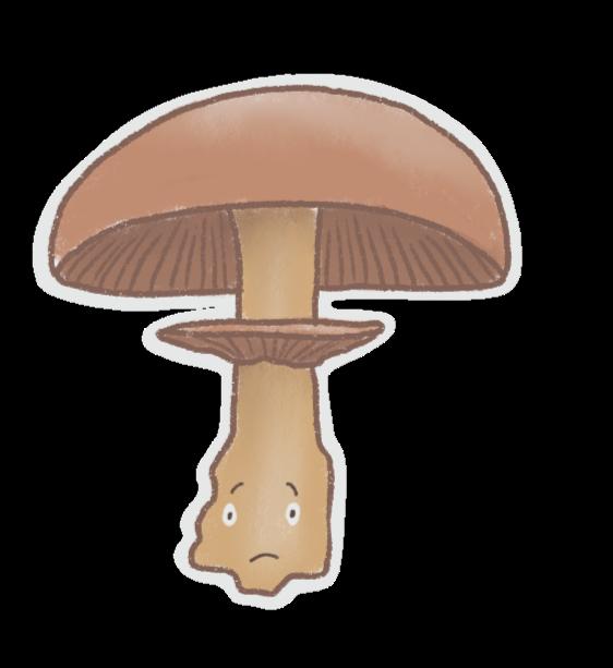 Mushrooms Stickers messages sticker-3