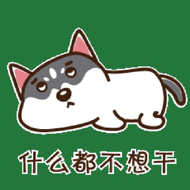 哈鲁是二哈 messages sticker-11