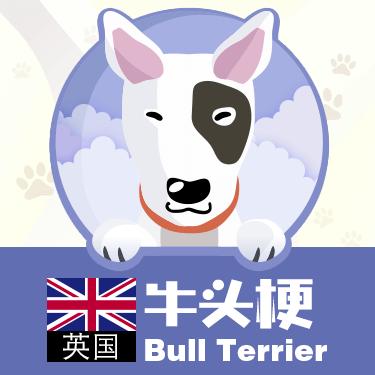 狗狗类型图-贴纸 messages sticker-7