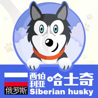 狗狗类型图-贴纸 messages sticker-8